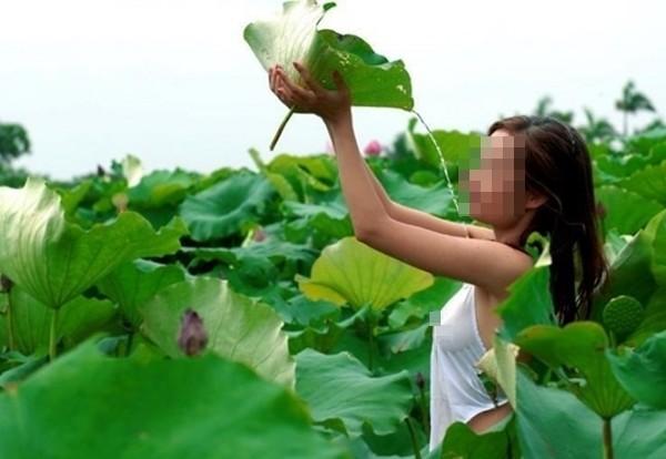 thiếu nữ lộ ngực khi chụp ảnh cùng sen Hồ Tây