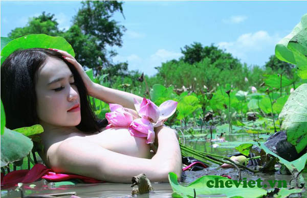 Với cô bạn tôi, vẫn khắc khoải thương nhớ trà sen Tây Hồ khi xa Hà Nội.