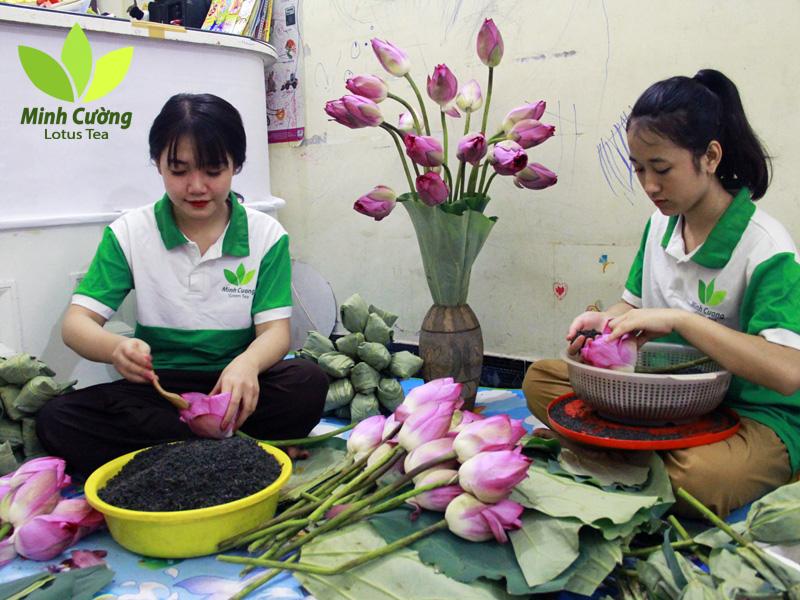 Trà sen Minh Cường làm hàng chục ngàn bông trà ướp sen cho khách hàng