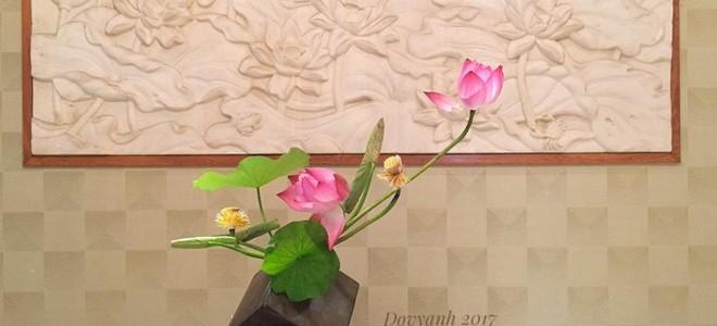 Bí quyết cắm hoa sen Hà Nội đẹp