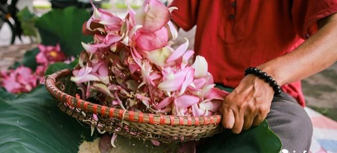 Chè ướp hoa sen Hồ Tây