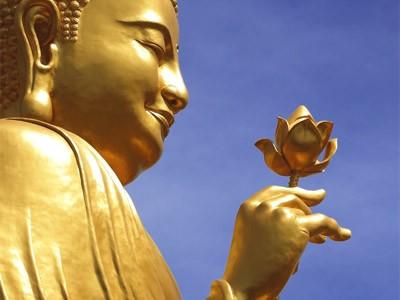 Sen Hồ Tây trong Phật giáo