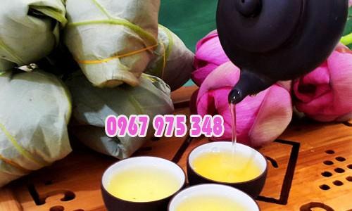 Cách pha trà ướp sen