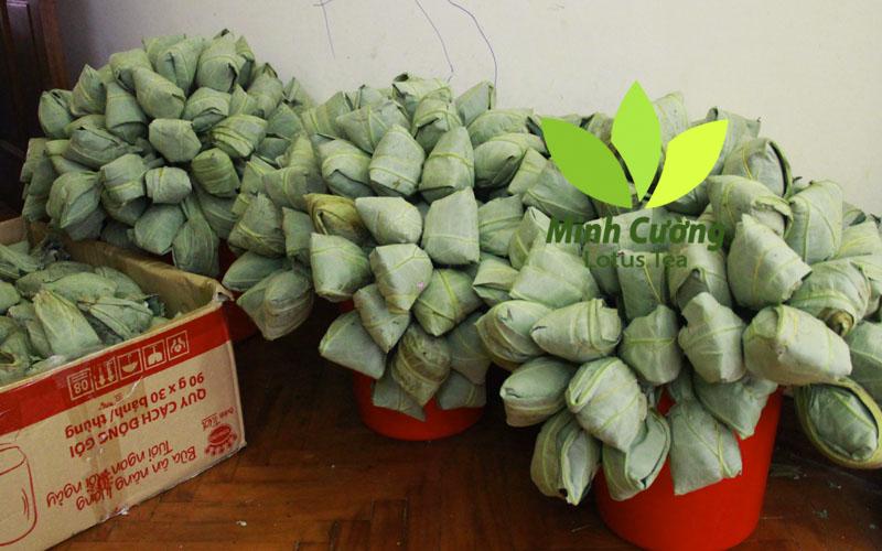 Trà sen Minh Cường có bí quyết đặc biệt làm chè ướp bông sen tươi