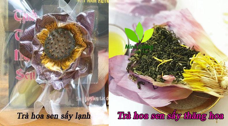 phân biệt Trà hoa sen sấy khô bằng hai công nghệ khác nhau